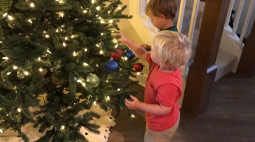 The boys LOVED decorating the tree this year!